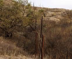 ranch border